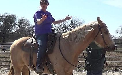 The Why behind each horse problem. 3L Horsemanship- The fundamentals- Larr Frenc/Arkansas
