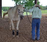 Arkansas horsemanship clinic, Larry works with Digger on disengaging his hips. 3L Horsemanship