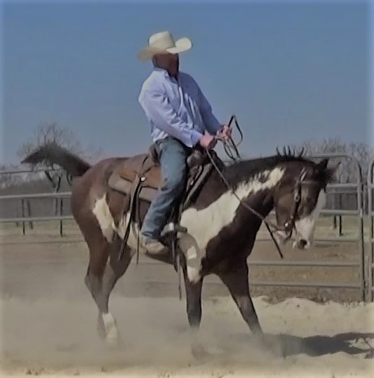 The quick fix is a dead end. It will be mental pain for you and physical pain for your horse. The Why behind every horse behavior issue is the way to go.