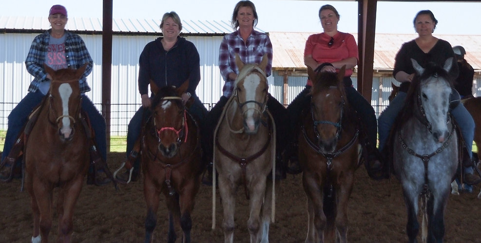 A Private  Horsemanship Clinic.