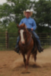 Asking your horse to stop. Once your horse can back up freely from a standstill, you can ask for a correct stop. Larry French Horsemanship