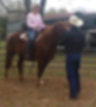Explaining the Why and What To Do. Then doing it. 3L Horsemanship/1on1 Coaching/Larry French/Natural Horsemanship