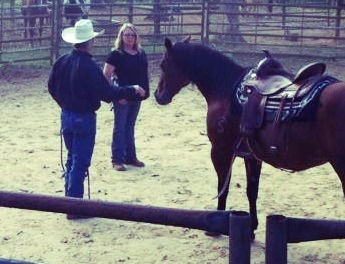 We must improve ourselves first. Every horse problem was caused by a human. 3L Horsemanship