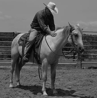 Study your horse from the inside out - - not from the outside in. Larry French Horsemanship