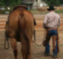 Mentally prepare yourself on the outcome you want from your horse as you walk to te arena. Larry French Horsemanship
