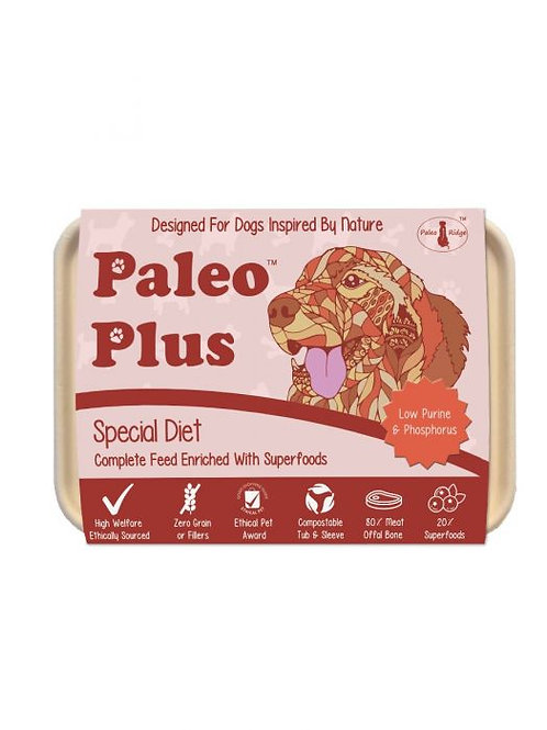 Paleo Plus Special Diet