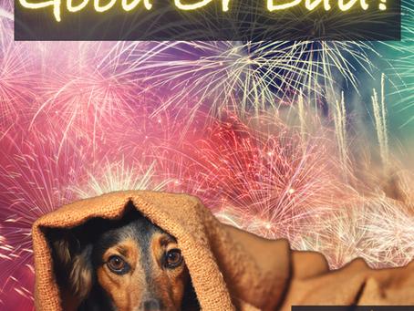 Fireworks Good or Bad?