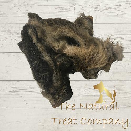 Naturals Hairy Lamb Ears