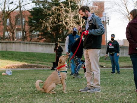 Group Dog Training with Megan Blake, The Pet Lifestyle Coach®