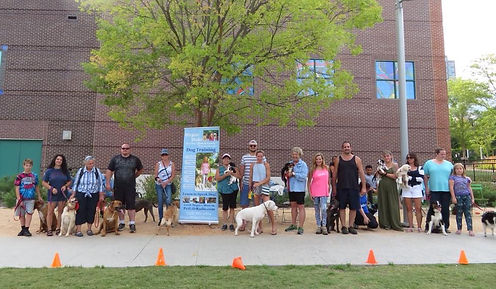 Group Dog Training at LeBauer Park