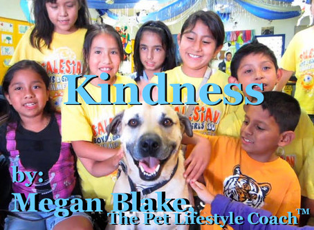 "A Kindness ""Dogumentary"" With Megan Blake!"