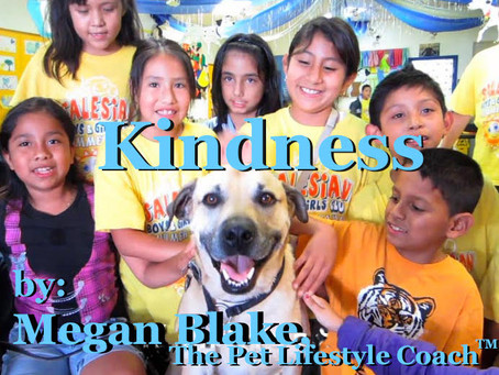 """A Kindness """"Dogumentary"""" With Megan Blake!"""