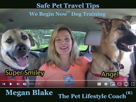 Pet Travel Tips With Megan Blake!