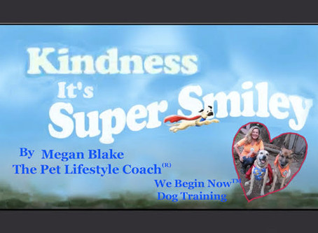 Megan Blake And Super Smiley's Animated Short Film