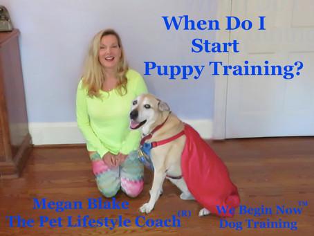 Puppy Training Tips From Megan Blake!