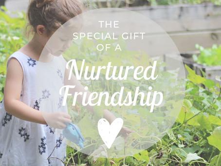 The Importance Of A Nurtured Friendship