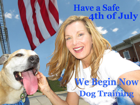 Megan Blake's Top 5 4th of July Pet Safety Tips