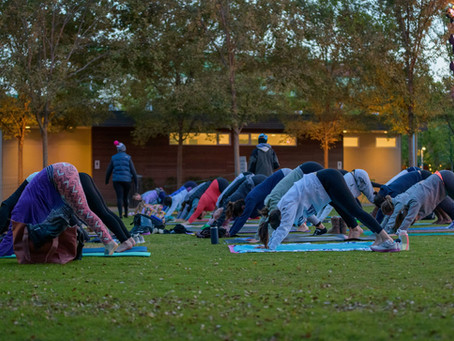 Bend your mind and inspire yourself with yoga together