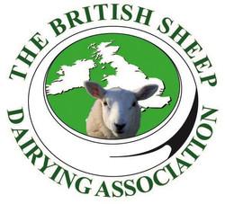 BSDA Logo rgb (2)