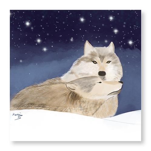 Polar Park Wolves