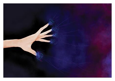 Karin Star Illustration All Souls