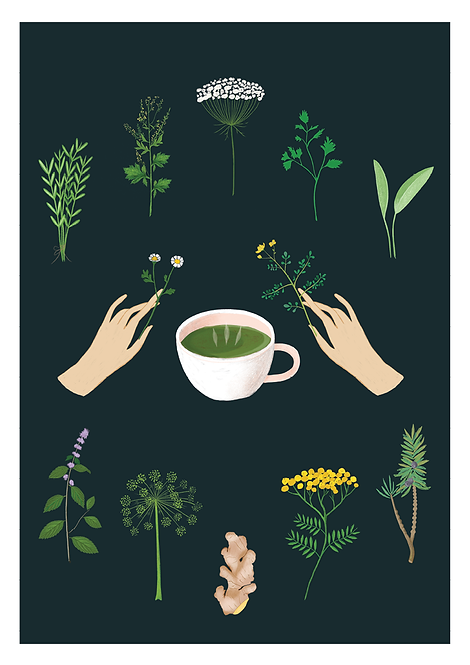 Magical Herb Tea