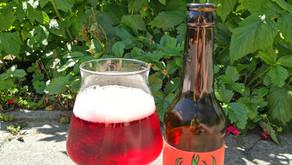 Bier des Monats: Saure Himbeere