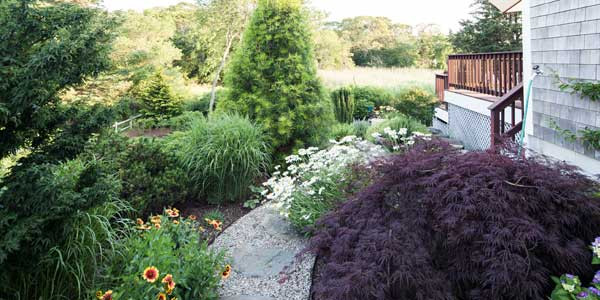 The Health Benefits Of A Healthy Yard