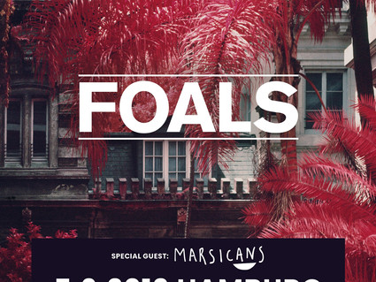 JUST ANNOUNCED: SUPPORTING FOALS SUPPORT IN GERMANY