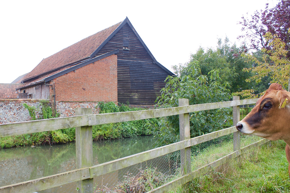 Team meeting on site to discuss the next phase for these historic farm buildings