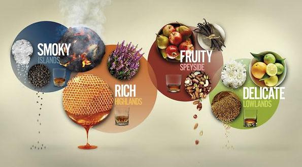 專家vs自己,你更相信誰?這張圖表讓你找出最適合自己口味的酒!