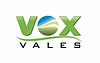 VOX logo 1.webp