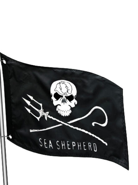 Jolly Roger Marine Flag