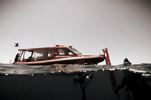 Boat Diver Specialty - SOLO