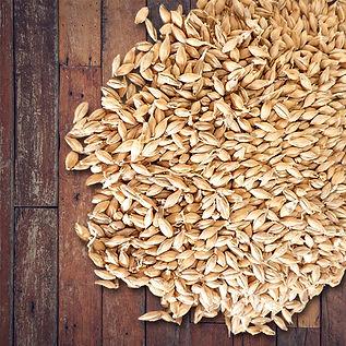 grains 2.jpg
