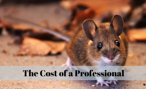 The Cost of a Professional