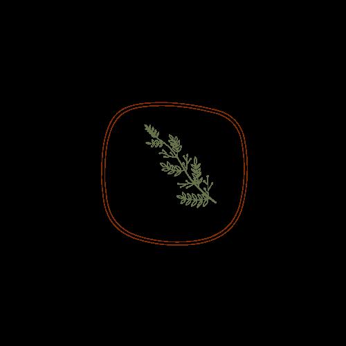 TIAs Table leaf logo.png