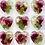Thumbnail: Floral heart