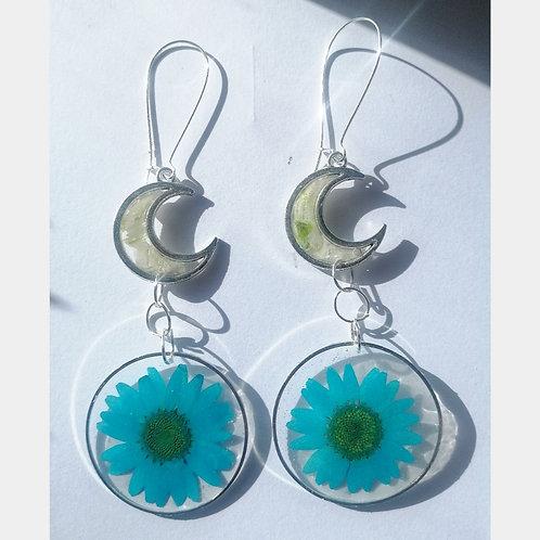 Midnight delight earrings