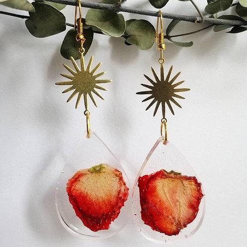 Wild strawberries 🍓