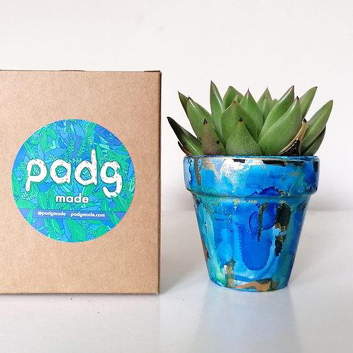 Padg pot (pot only)