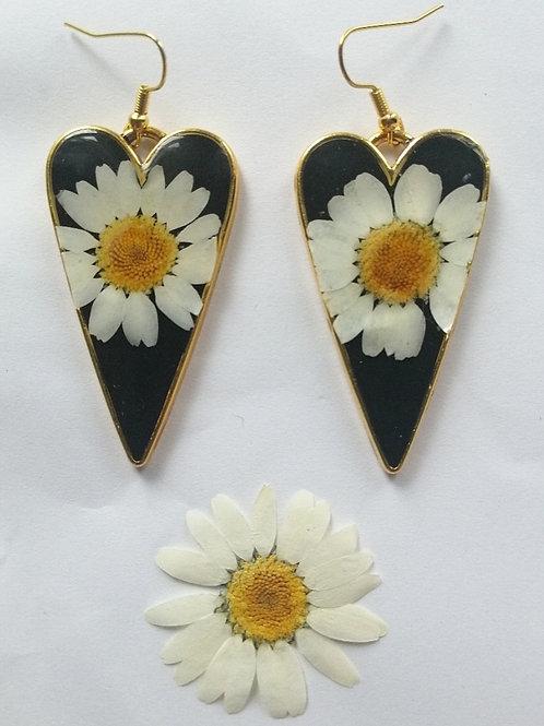 Daisy gold heart earrings 🌼