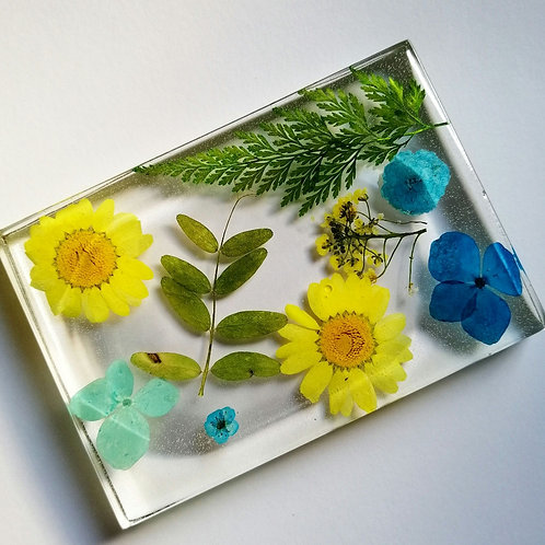 Floral soap dish 🌺