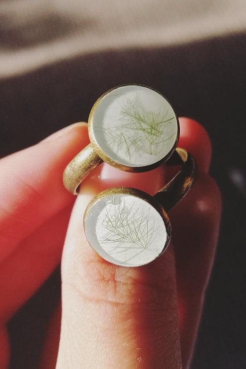 Adjustable fern ring