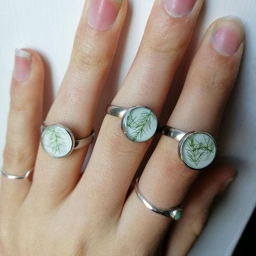 Fern adjustable ring