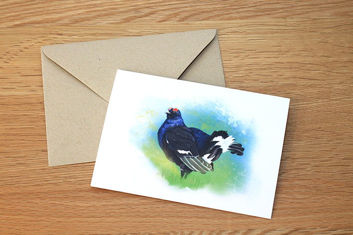Black Grouse illustration greeting card