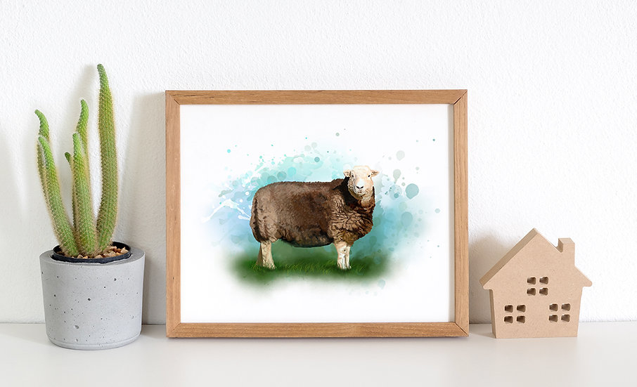 Herdwick sheep print