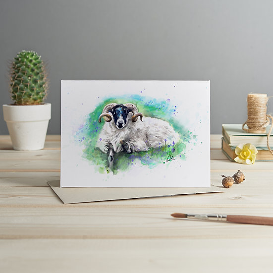 Swaledale sheep illustration card