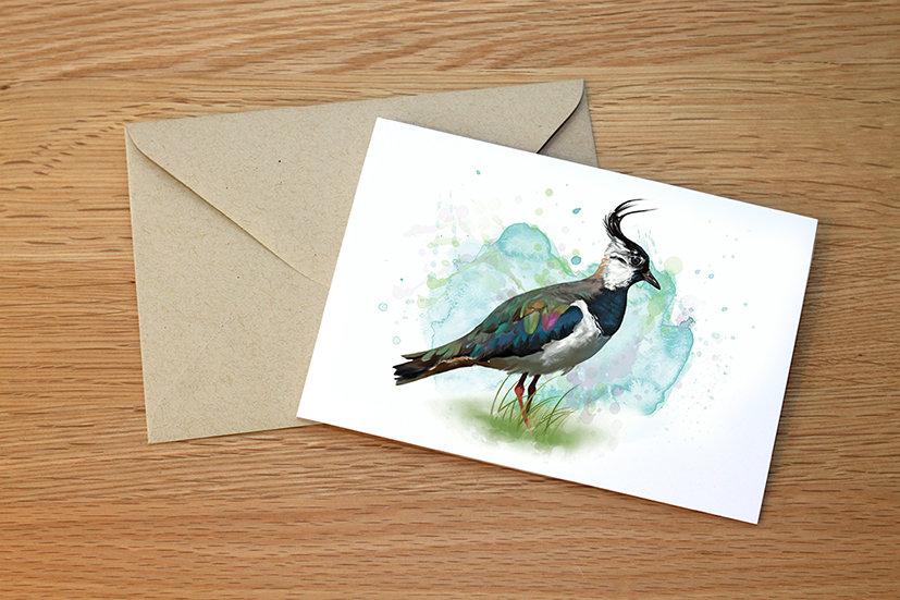 Lapwing illustration greeting card
