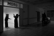 02_ Yusuf_Arica.jpg